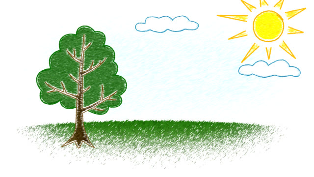 kid's drawing of growing tree - pencil drawing stock videos & royalty-free footage