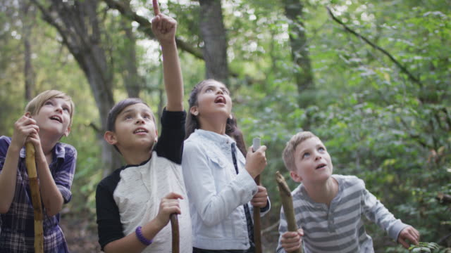vídeos de stock e filmes b-roll de kids exploring the forest together - acampar