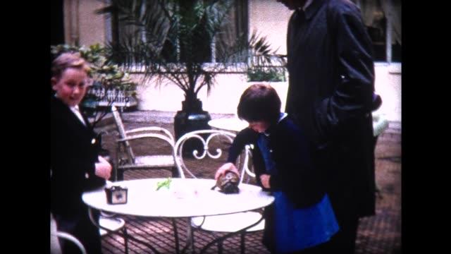 1965 kids feeding box turtle at Paris Hotel