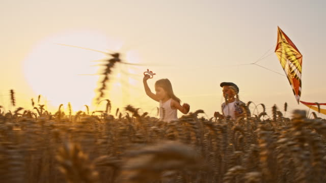 SLO MO Kids flying a kite in wheat field