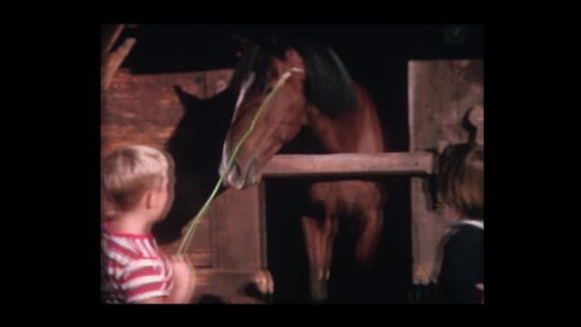 vídeos de stock e filmes b-roll de 1964 kids meet horse in stable in corral - rancho quinta