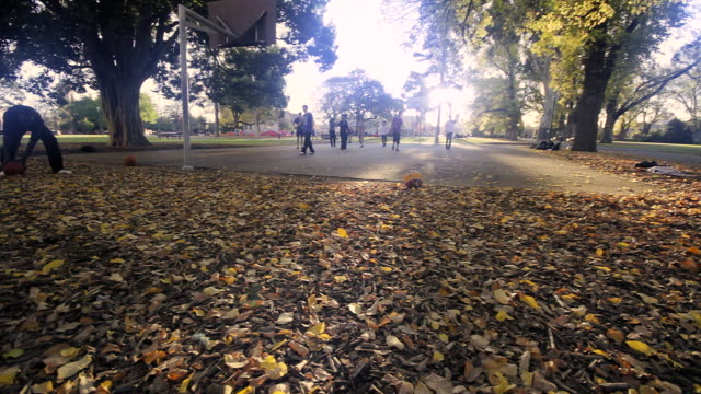 MS Kids playing basketball in late sunshine amongst autumn leaves / Melbourne, Victoria, Australia