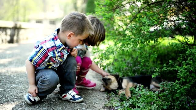 Kinder spielen mit Hund
