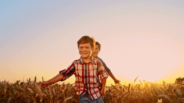 slo mo kids running in the wheat field - family with three children stock videos & royalty-free footage