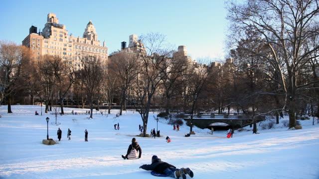 kids snow sledding - hill stock videos & royalty-free footage