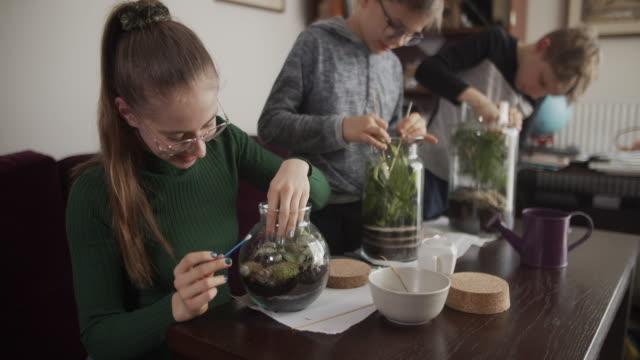 kinder, die sich um ihre pflanzenflaschengärten gemanader werden - heimwerken stock-videos und b-roll-filmmaterial