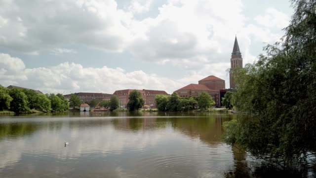 kiel town hall tower: seagulls at the town pond - rathausturm kiel: möwen am stadteich kleinen kiel - tina terras michael walter stock videos & royalty-free footage