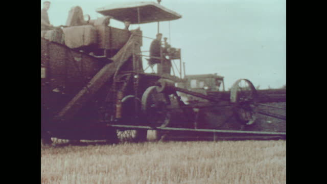 1959 kiev wheat farmers harvest grain on state owned collectives - 1950 1959 stock-videos und b-roll-filmmaterial