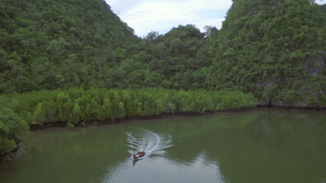 kilim karst geoforest park with a boat passing underneath the camera - langkawi stock videos and b-roll footage