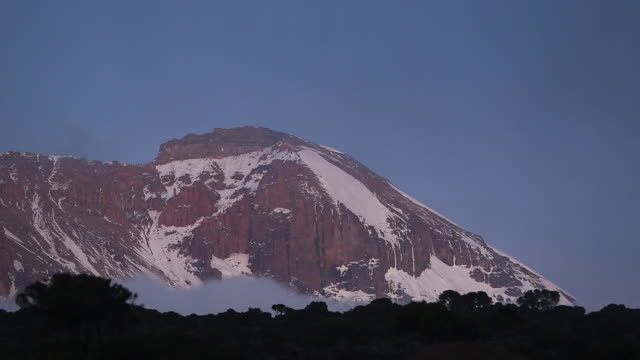 kilimanjaro peak - wiese stock videos & royalty-free footage