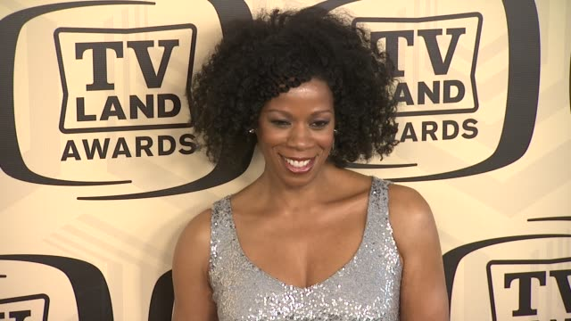 kim wayans at tv land awards 10th anniversary arrivals at lexington avenue armory on april 14 2012 in new york ny - tv land awards stock videos and b-roll footage