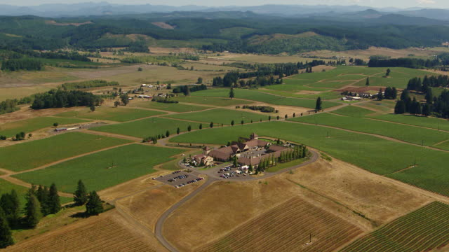 ws aerial ds king estate winery with buildings and vineyards / oregon, united states - eugene oregon stock videos & royalty-free footage