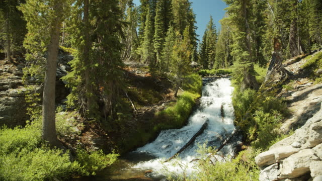 kings creek, lassen volcanic national park - californian sierra nevada stock videos & royalty-free footage