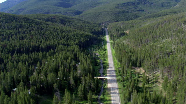 king's hill scenic byway  - aerial view - montana, cascade county, united states - two lane highway stock videos & royalty-free footage