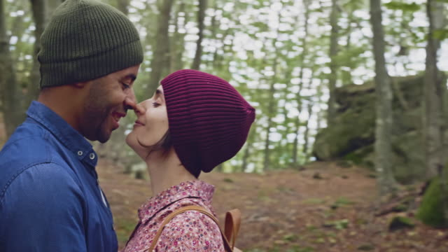 kissing in the autumn forest - beech tree stock videos and b-roll footage