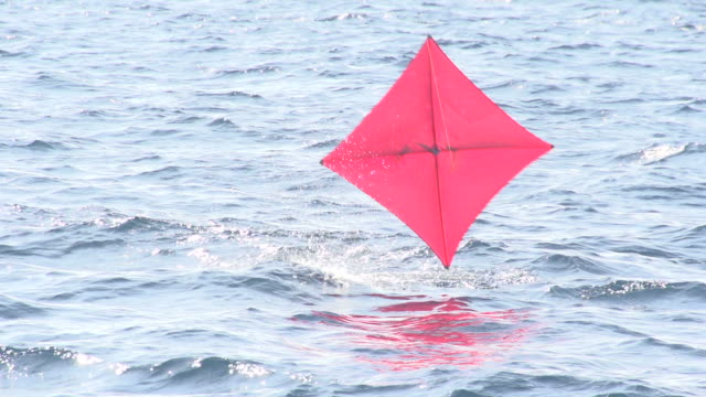 kite dancing above water off florida coast - kite toy stock videos and b-roll footage