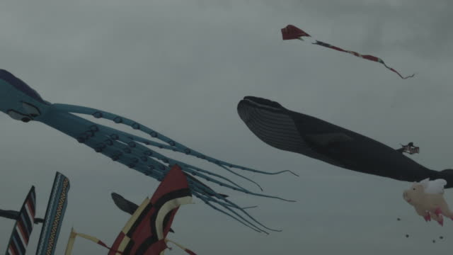 kite festival, long island - kite toy stock videos and b-roll footage