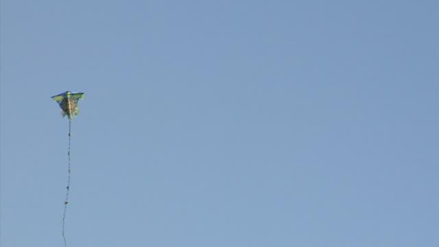 MS Kite flying against sky, Mount Tamalpais, California, USA