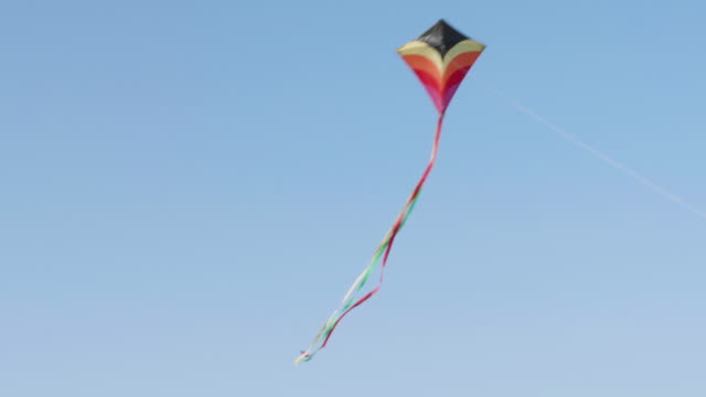 MS Kite Flying In Blue Sky