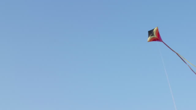 WS Kite Flying In Blue Sky