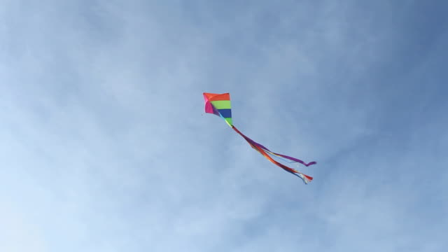 WS LA Kite Flying in Sky / Eastville, Virginia, USA