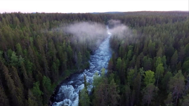 kitkajoki - wilderness river in finland - flowing stock videos & royalty-free footage
