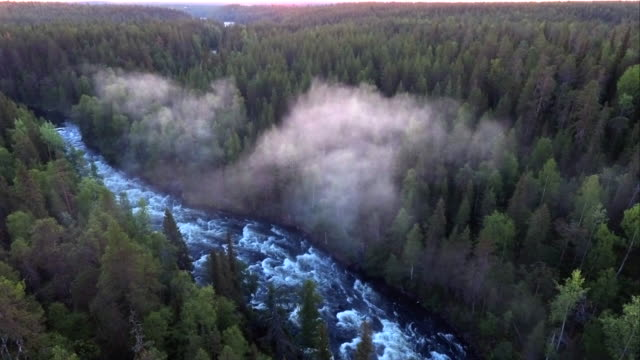 kitkajoki - wilderness river in finland - named wilderness area stock videos & royalty-free footage