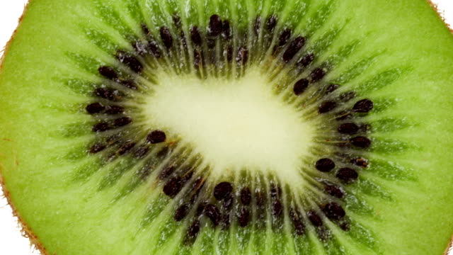 kiwi slice on white - kiwi fruit stock videos and b-roll footage