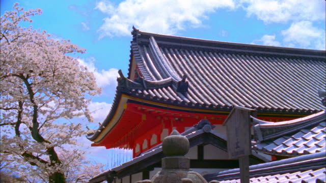 cu pan kiyomizu temple and cherry blossoms, kyoto japan - kyoto stock videos and b-roll footage