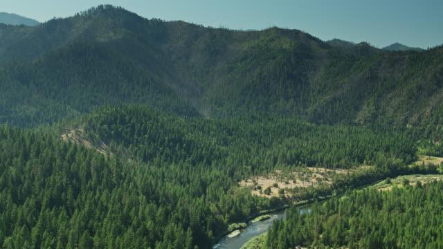 密集した森を通るクラマス川の曲がりくねり - 航空写真 - 国有林点の映像素材/bロール