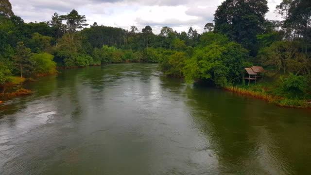 vídeos de stock, filmes e b-roll de klong pra cantou rio e floresta, atrações naturais em ratchaprapha dam no parque nacional de khao sok, província de surat thani, tailândia - árvore tropical
