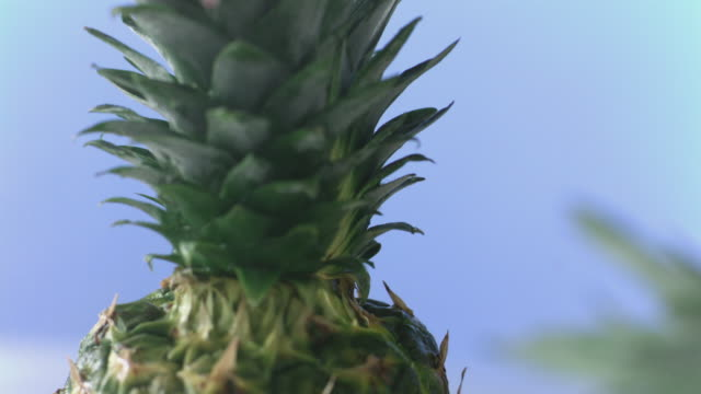 knife slices through pineapple from top down - pineapple stock videos & royalty-free footage