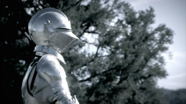 a knight and his steed wait for a joust. - traditional helmet stock videos and b-roll footage