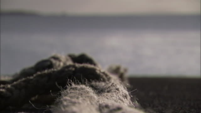 a knotted rope rests next to the ocean. - rope stock videos & royalty-free footage