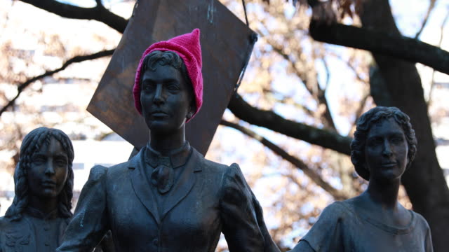 a pussy hat is placed on a women's suffrage statue in market square after the knoxville women's march in downtown knoxville sunday jan 21 2018 - hüten stock-videos und b-roll-filmmaterial