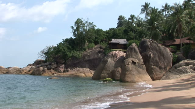 ko samui, thailandview of a beach in ko samui thailand - fan palm tree stock videos & royalty-free footage