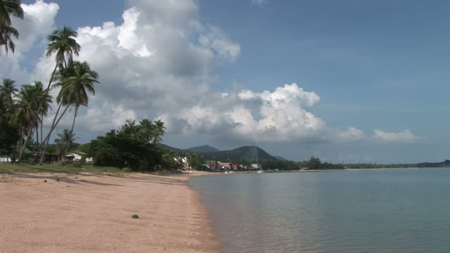 ko samui, thailandview of a beautiful beach in ko samui thailand - fan palm tree stock videos & royalty-free footage