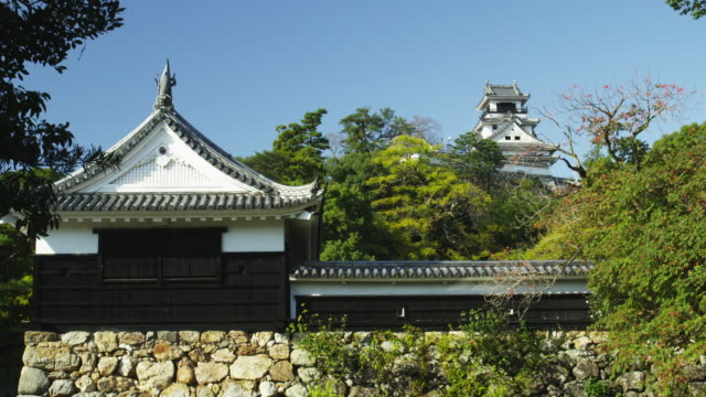 kochi castle,kochi city,kochi prefecture,japan - 城点の映像素材/bロール