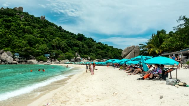 koh tao - a paradise island in thailand. - ko samui stock videos & royalty-free footage