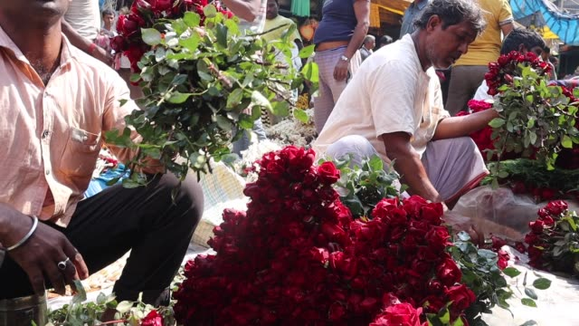 kolkata, india - february 13, 2020 flower vendors sell roses in a wholesale flower market in the eve of valentine day. the flowers come from... - howrah bridge stock videos & royalty-free footage