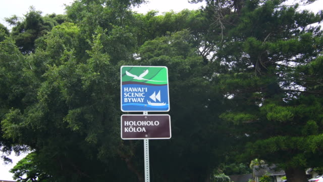 vídeos y material grabado en eventos de stock de koloa kauai hawaii sign for holoholo koloa along highway along the hawaii scenic byway 4k - representación de animal