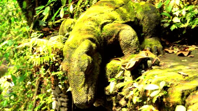 komodo dragon stone statue in wildlife sanctuary indonesia - ubud stock videos & royalty-free footage