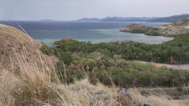 komodo national park. - フロレス点の映像素材/bロール