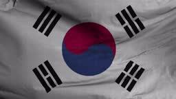 Korea South Flag Textured Waving Background 4K