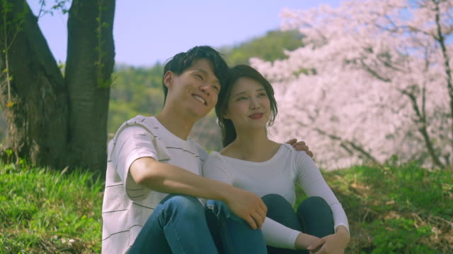 korean man and woman smiling under cherry blossom trees - south korea couple stock videos & royalty-free footage