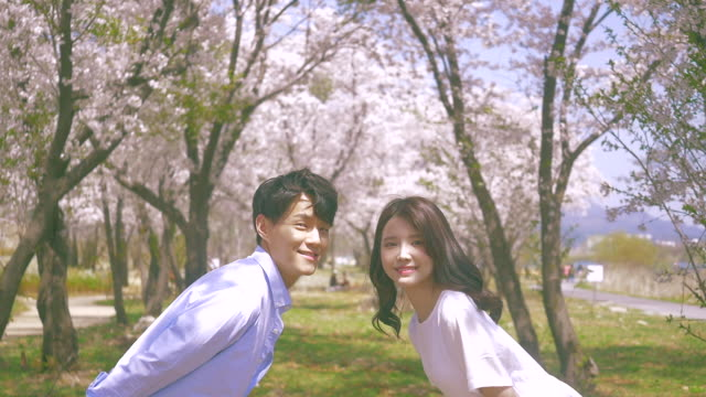 korean man and woman taking a picture under cherry blossom trees - south korea couple stock videos & royalty-free footage