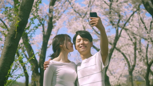 korean man and woman taking a selfie under cherry blossom trees - south korea couple stock videos & royalty-free footage