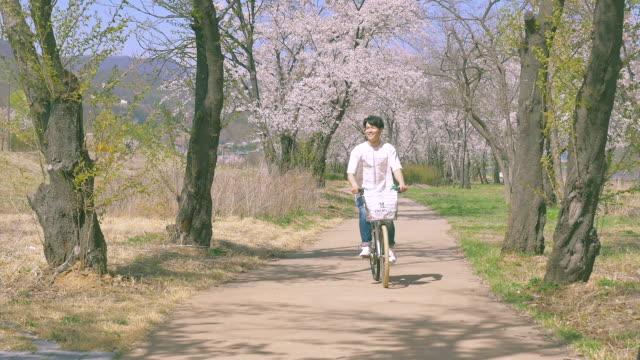 korean man riding the bicycle under cherry blossom trees - 年の差カップル点の映像素材/bロール