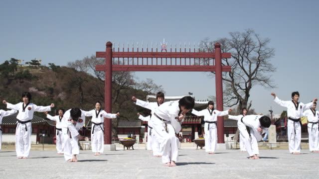 ws pan  korean martial arts group performing taekwondo  / kyungkido, bucheon, south korea - karate stock videos and b-roll footage