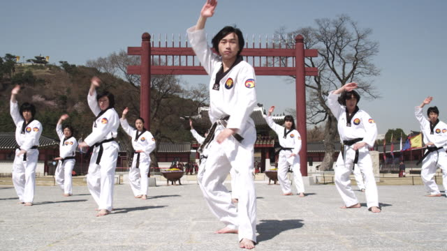 ms td tu korean martial arts group performing taekwondo  / kyungkido, bucheon, south korea - martial arts stock videos & royalty-free footage